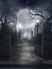 Grave Yard Printed Photo Background / 730