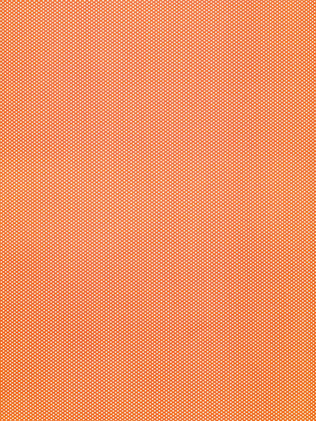 Tangerine Twist Photo Background / 8007 - DropPlace