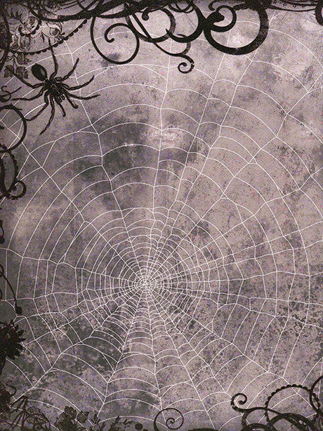 Along Came A Spider Halloween Photo background Printed Photo Backdrop / 8063 - DropPlace