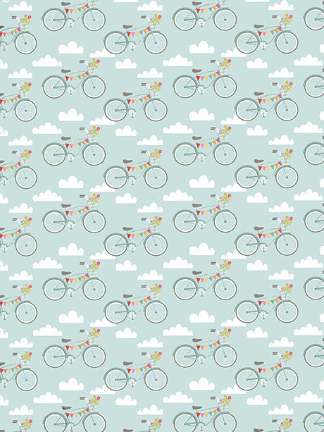 Ride in the Sky Printed Photography Background / 9905