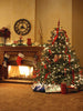 Warmth and Good Tidings Photo Background / 066