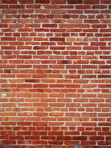 Traditional Brick Wall Photo Background / 1178 - DropPlace