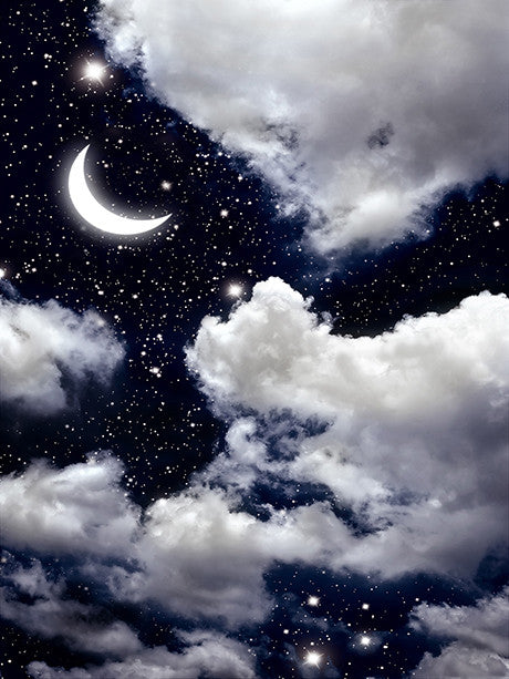 Printed Background Night Sky with Moon Backdrop Drop Photography Backdrop / 1180 - DropPlace