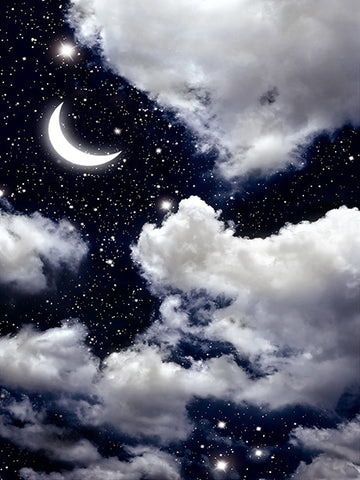 Printed Background Night Sky with Moon Backdrop Drop Photography Backdrop / 1180