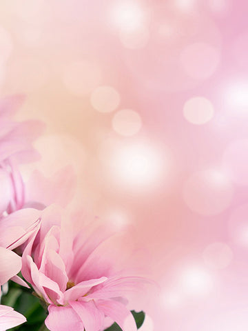 Flower Sparkle Photo Background / 1269 - DropPlace