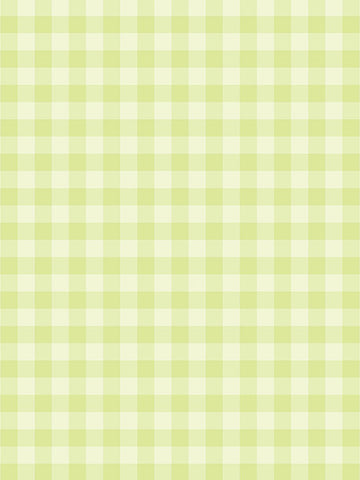 Sour Lime Photo Background / 1342 - DropPlace
