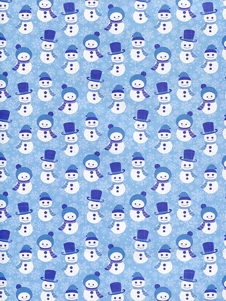 Frosty the Snowman Printed Photo Backdrop / 2082 - DropPlace