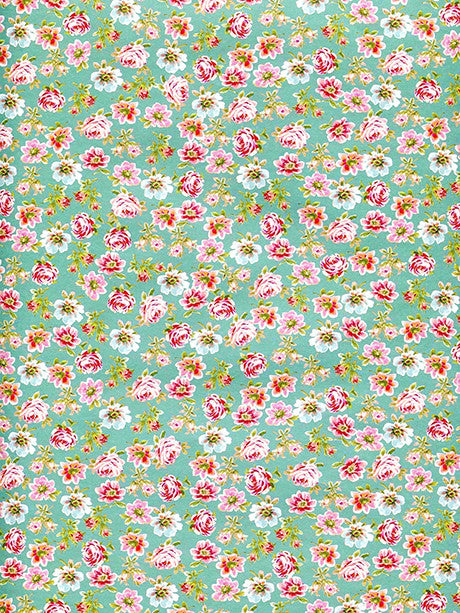 Honeydew Photo Backdrop / 2312