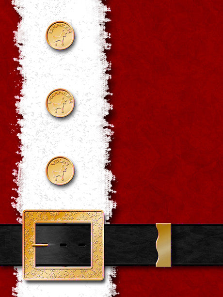 Santa! Printed Photo Background / 263 - DropPlace