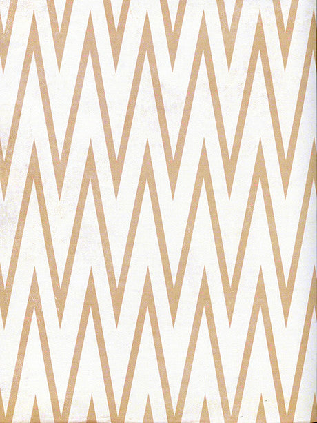 Sharp Chevron Photography Background / 2643