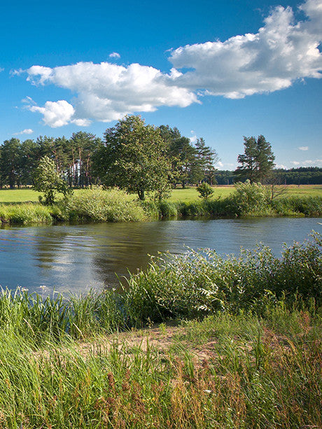 Open Field River Photo Background / 3042 - DropPlace