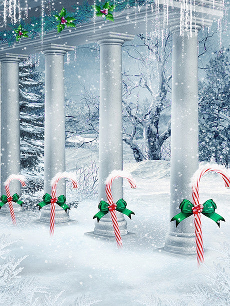 Peppermint Trail Photo Background / 3064 - DropPlace