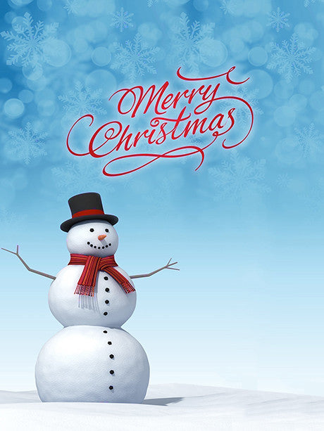 Snowflakes and Snowman Script Photo Background / 3119