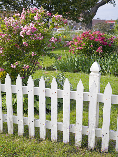 White Picket Fence Printed Photo Background / 454 - DropPlace