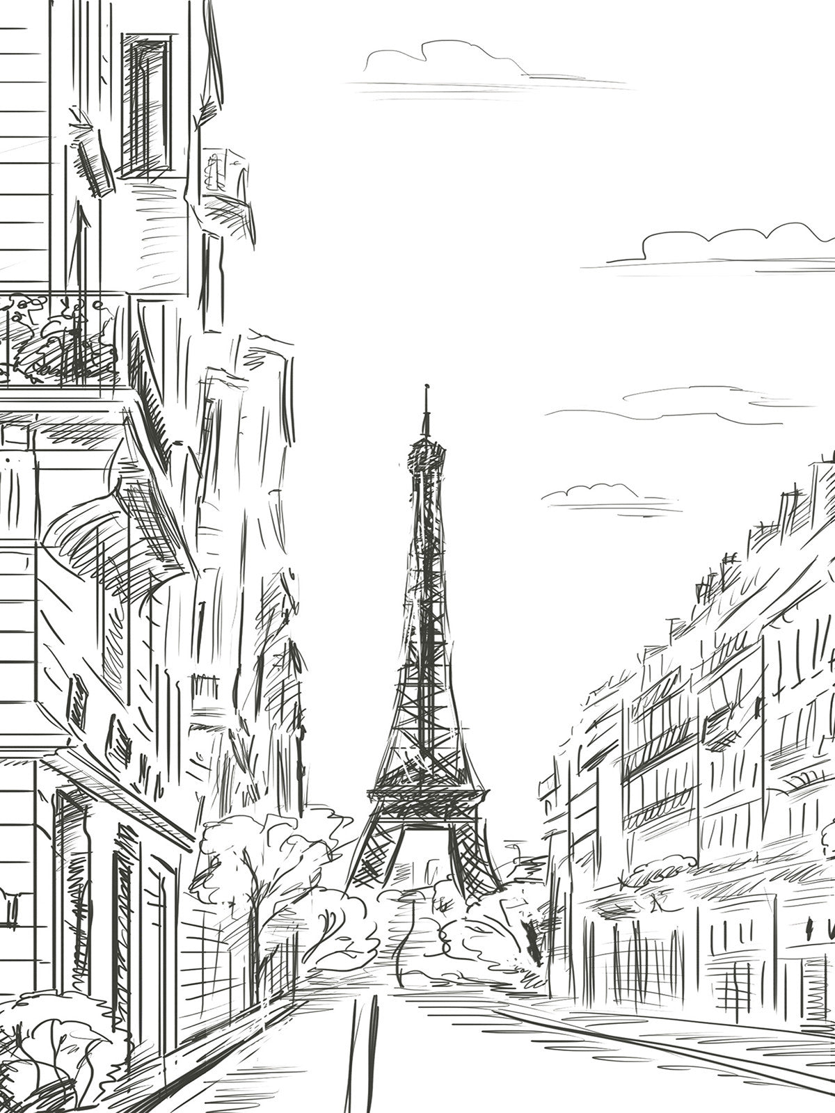 Paris Line Art Printed Photography Backdrop / 7410