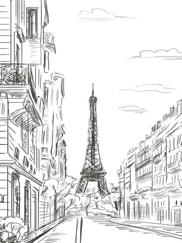 Paris Line Art Printed Photography Backdrop / 7410 - DropPlace