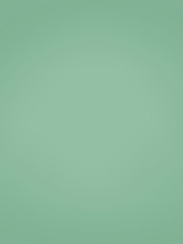 Green Solid Photo Background / 9108 - DropPlace