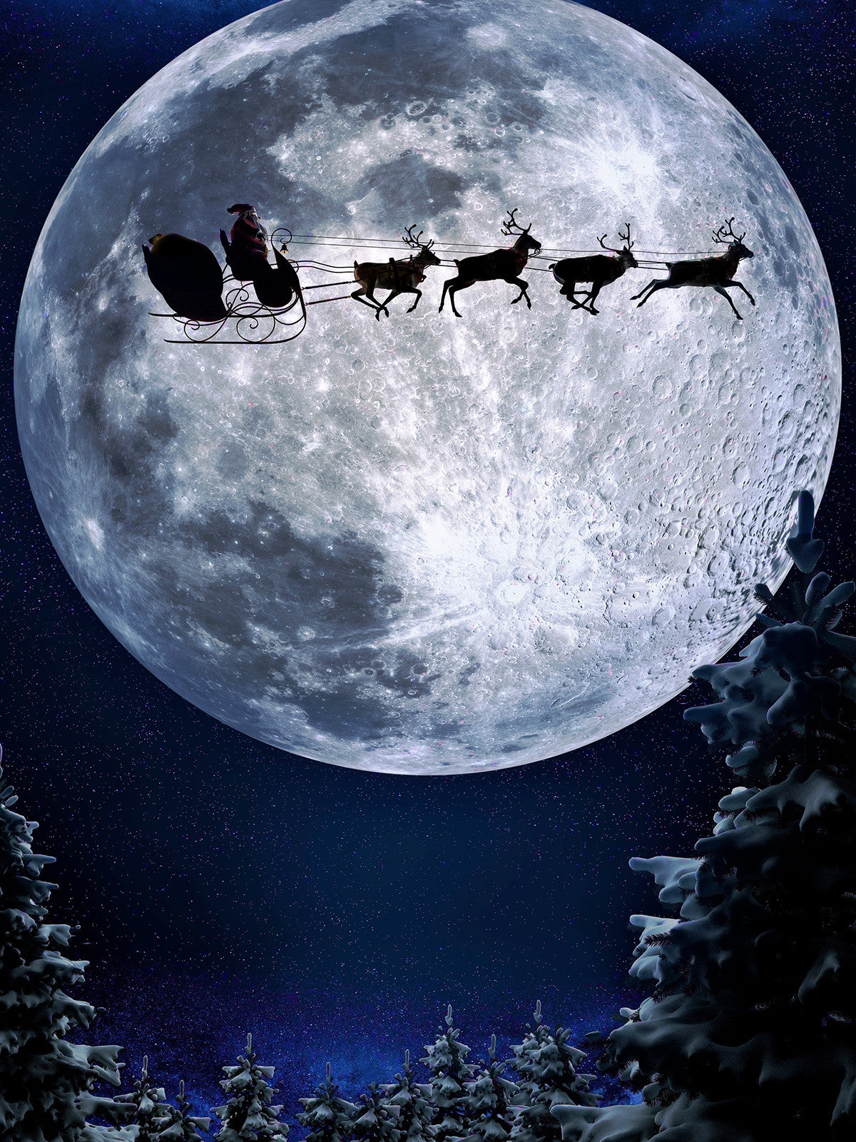 Sleigh Ride Printed Photography Background / 9264 - DropPlace