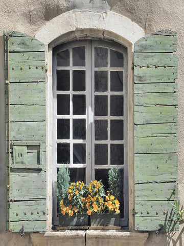 Flowers in the Window with Shutters Backdrop Photography Background / 936 - DropPlace