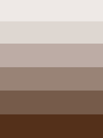 Brown Ombre Printed Photography Backdrop / 9614 - DropPlace