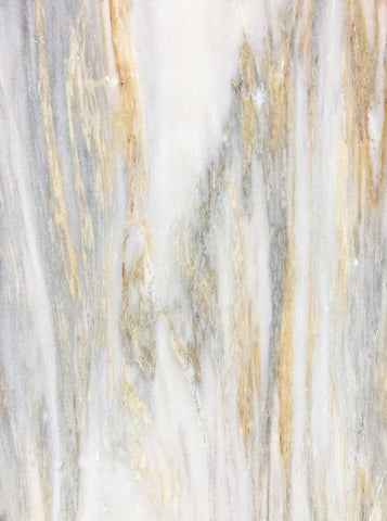 Printed Marble Tans White Backdrop - 1184 - DropPlace