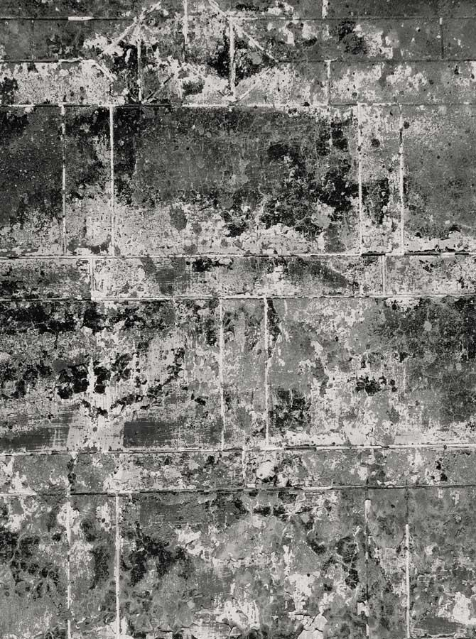 Printed Weathered Grey Backdrop - 1355 - DropPlace