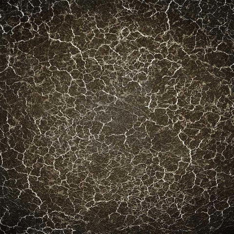 Black Marble Backdrop - 1425 - DropPlace