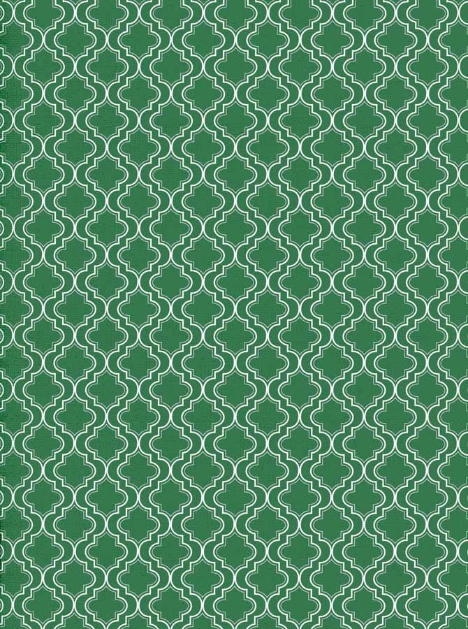Moroccan Pattern Green Backdrop - 2624 - DropPlace