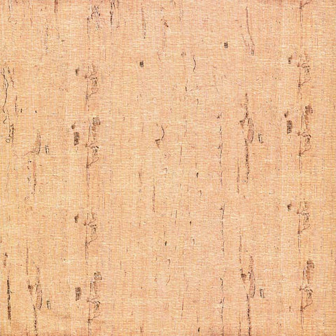 Beige Birch Wood Backdrop - 7180 - DropPlace