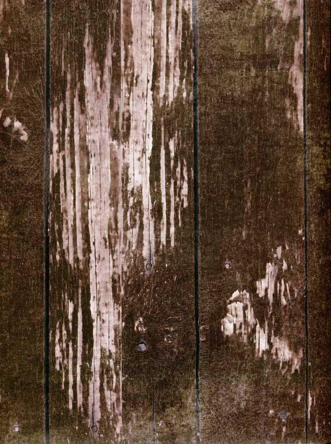 Dark Brown Wood Backdrop - 7211 - DropPlace