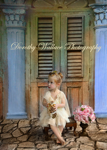 Vintage Shutters Printed Photography Backdrop / 728 - DropPlace