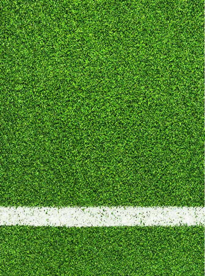 Green Sport Turf Backdrop - 8001 - DropPlace