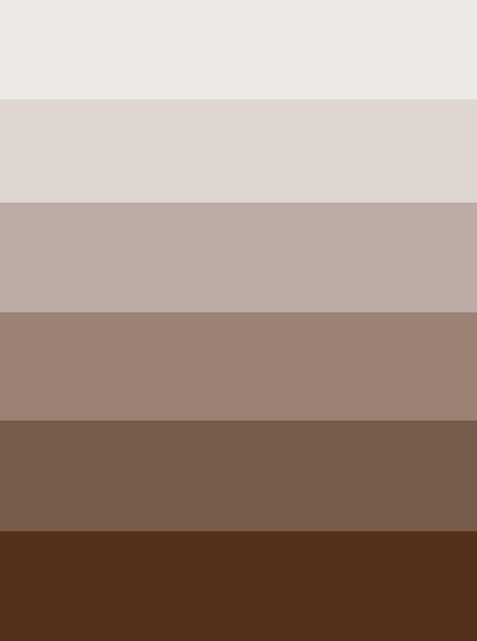 Ombre Brown Tan Linear Backdrop - 9614 - DropPlace