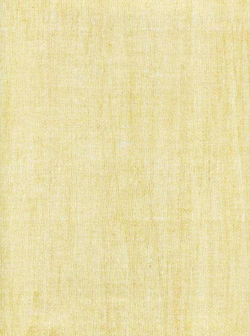 Texture Ivory Backdrop - 9724 - DropPlace