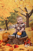 Autumn Trees Printed Photography Backdrop / 7747 - DropPlace