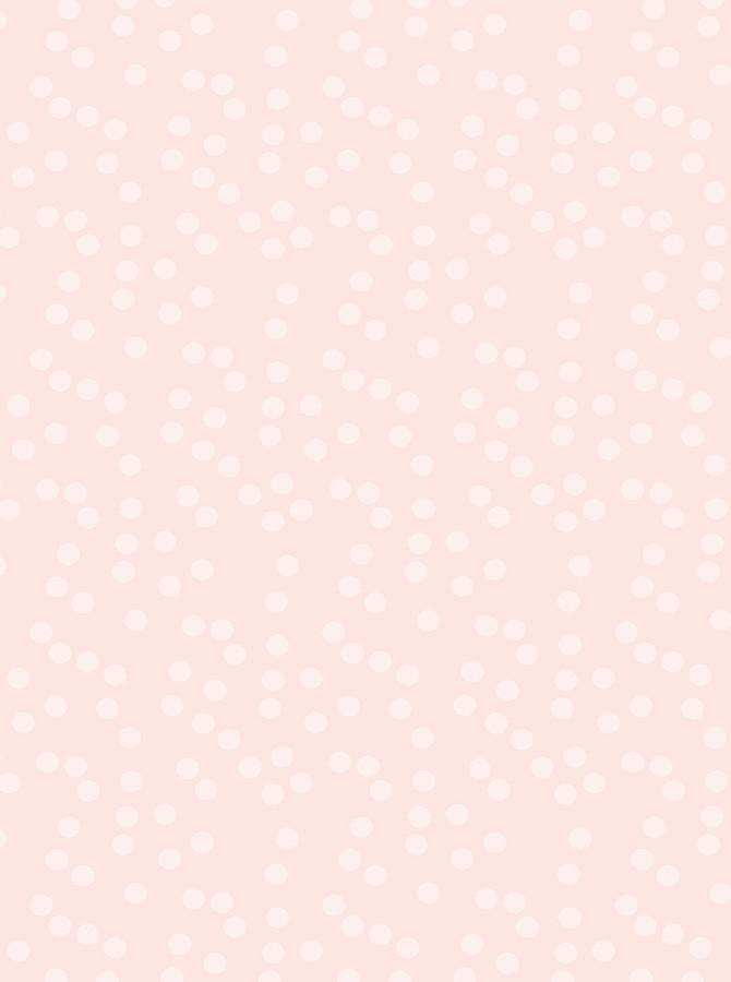 Light Pink With White Polka Dot Backdrop - 6161