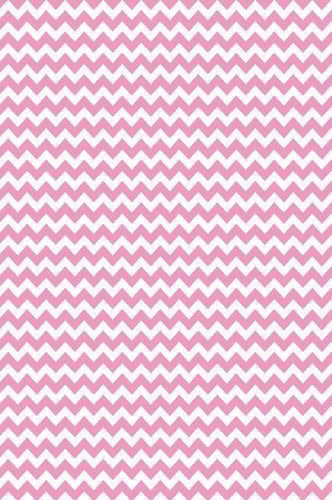 Hot Tamale Chevron Printed Photography Background / 9808 - DropPlace