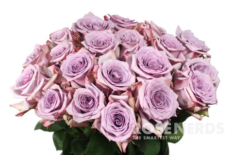 what is the meaning of purple roses