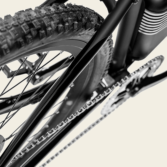 Schwalbe Knobby Tires | Rally Electric Bike