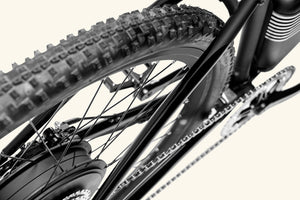 Rally Electric bike back tire