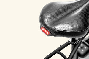 Rally Electric bike tail lamp