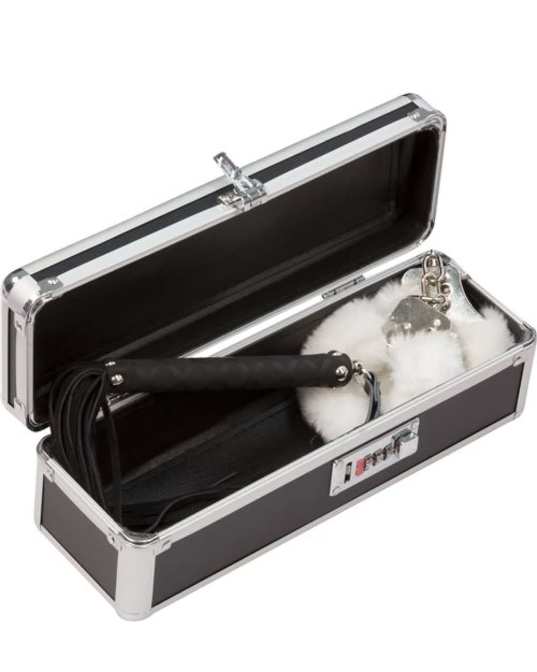 Lockable Vibrator Case Small - Black open with toys inside