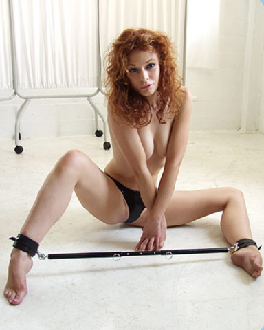 Kinklab Adjustable Steel Spreader Bar
