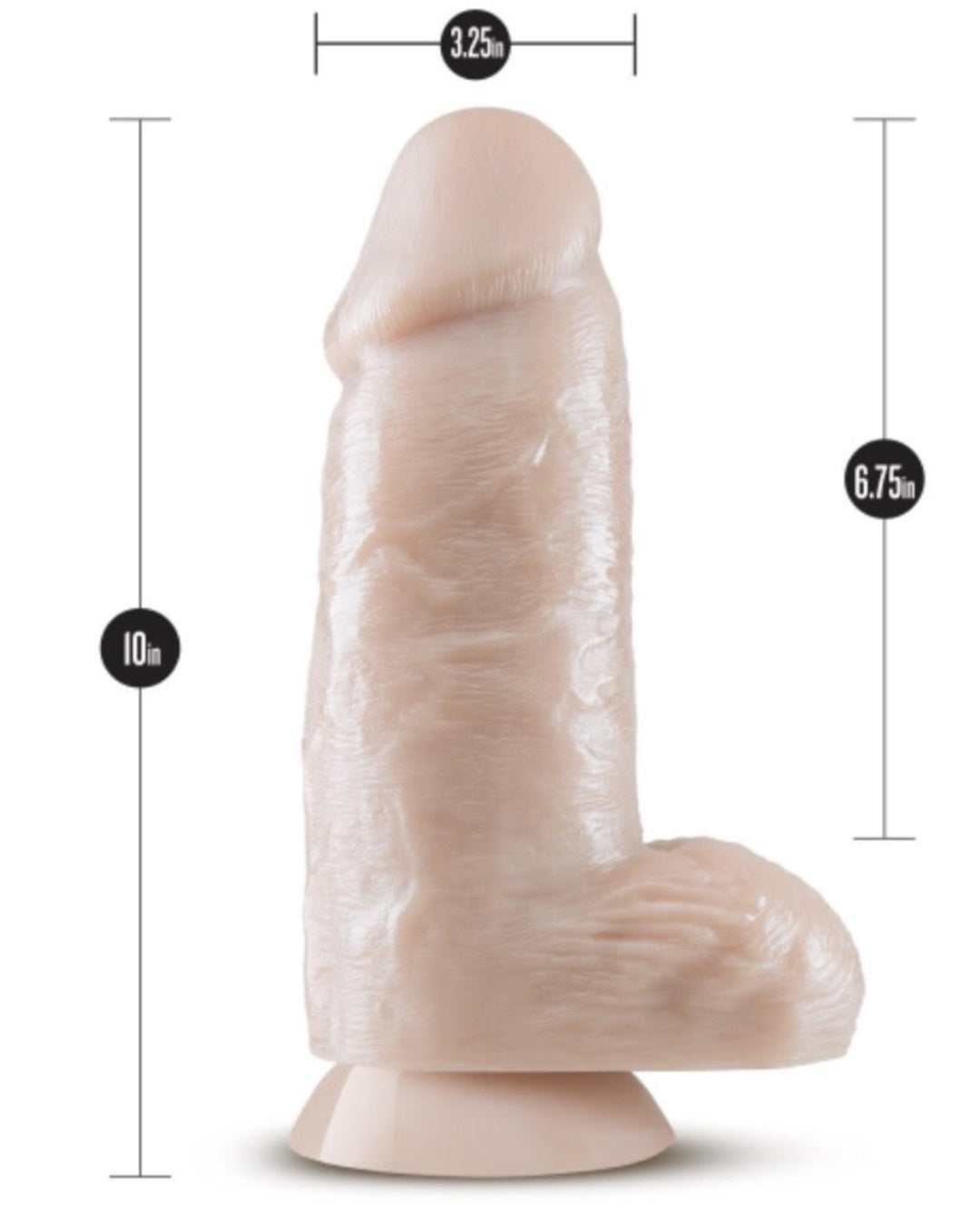 Dr Skin Dr Chubbs 10 Inch Dildo with Suction Cup by Blush Novelties - Vanilla Dimensions