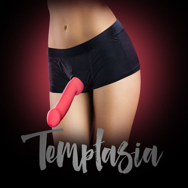 Temptasia Harness Briefs Black by Blush Novelties - Sizes S - XL with dildo