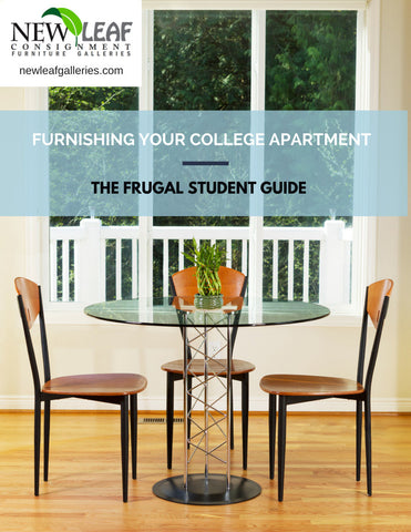 eBook - Furnishing Your College Apartment: The Frugal Student Guide