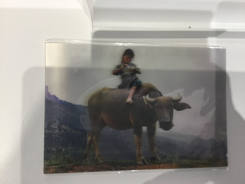 8858045007414 3D CARD A LIFE: GIRL RIDES A BUFFALO (ASIA BOOKS)