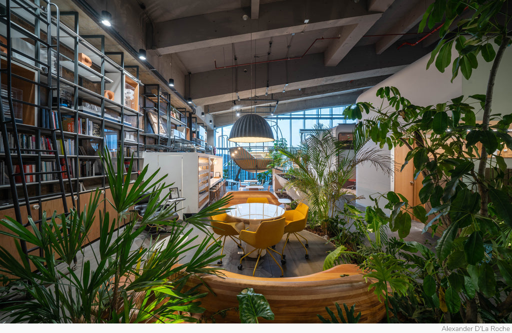 Parque Toreo Office by Broissin