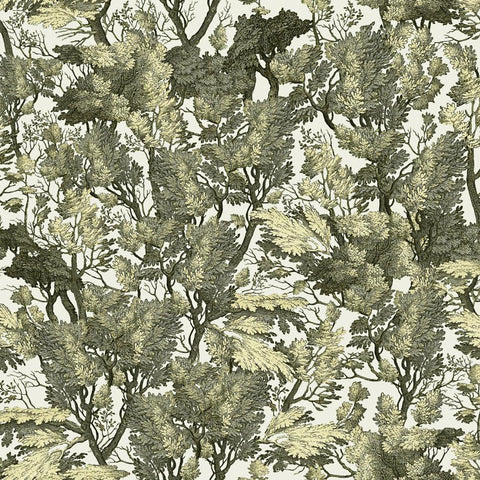Tree Foliage Wallpaper - Compendium Collection by MINDTHEGAP | Do Shop