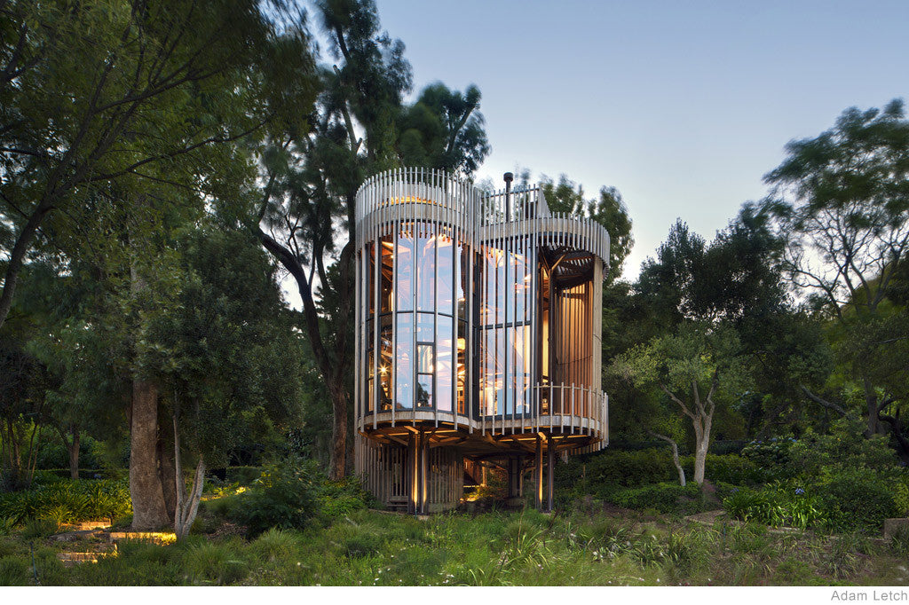 Tree House by Malan Vorster Architecture
